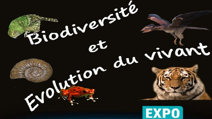 BiodiversiteVivant6e2018ENT.jpg